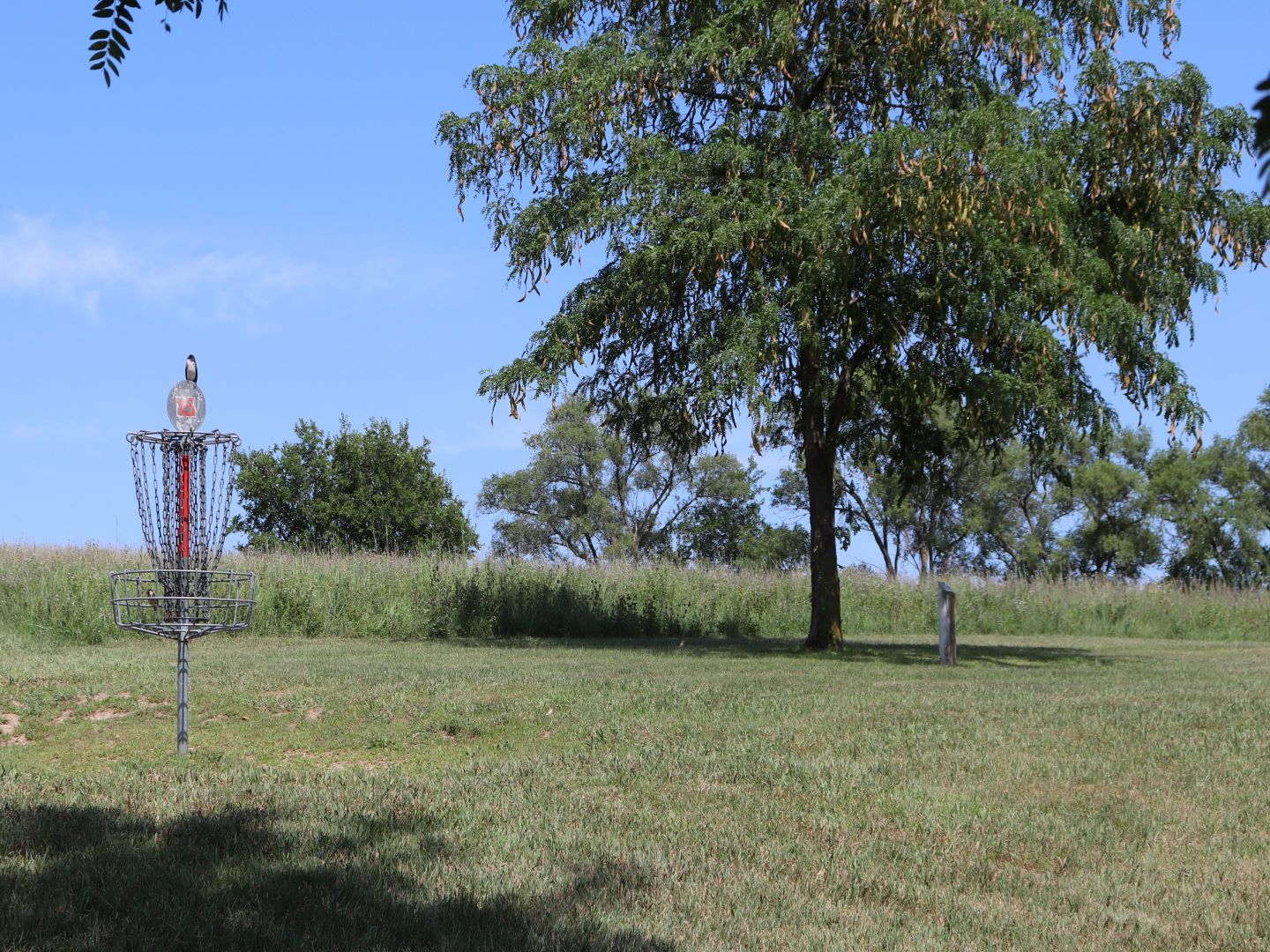 Disc Golf Courses City Of Norfolk